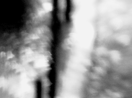 [uma imagem nunca está só] © alicevalentealves